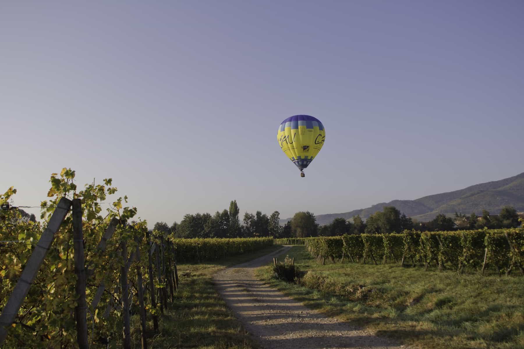 montgolfière avec le soleil dans les vignes