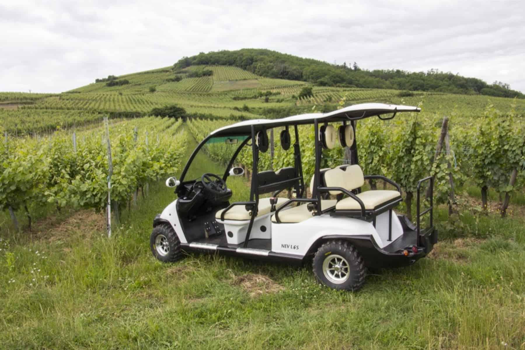 voiture électrique dans les vignes