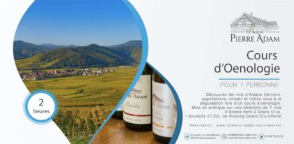 Gift voucher oenology course 1 person